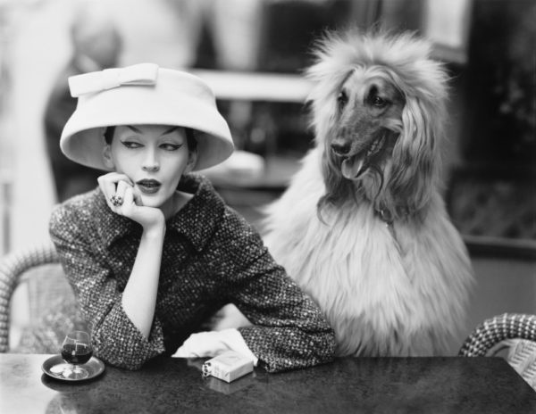 Dovima con Sacha, total look Balenciaga, foto Richard Avedon, 1955