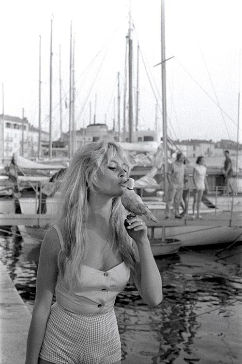 Brigitte Bardot al porto di St. Tropez con top e shorts stampa Vichy, estate 1958
